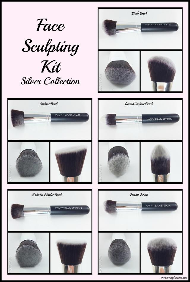 Makeup Brushes Face