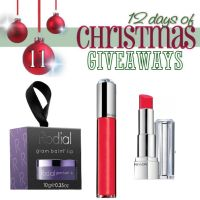 Day 11~ 12 days of Christmas Giveaways! Revlon, Rodial